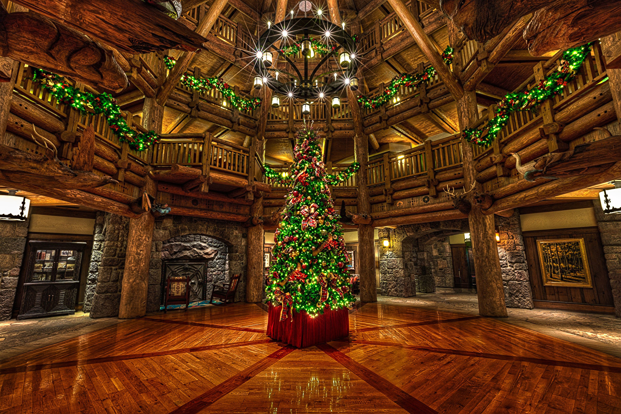 Pictures California Disneyland USA New year Christmas tree Parks Chandelier Fairy lights Christmas New Year tree park