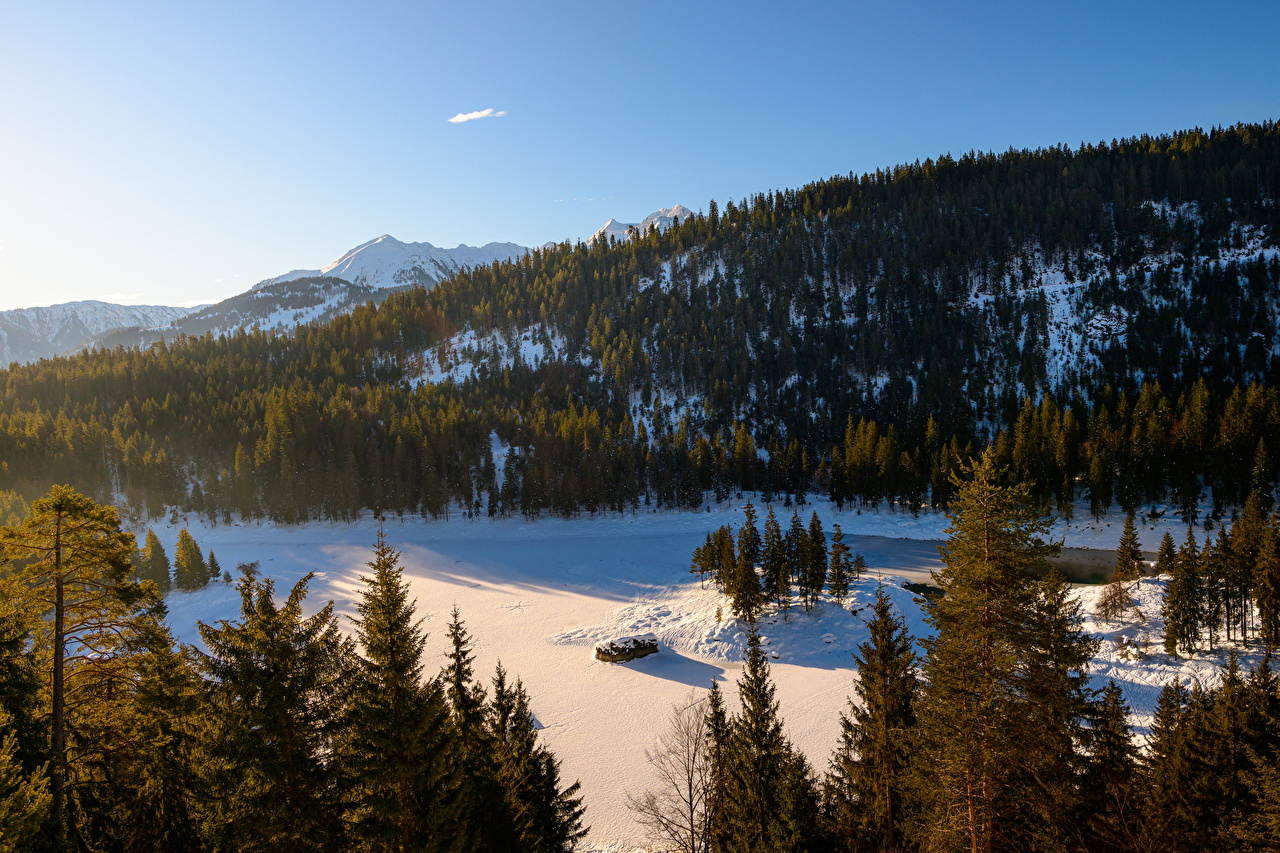 Photo Switzerland Lake Cauma, Flims Nature Mountains Morning Forests mountain forest