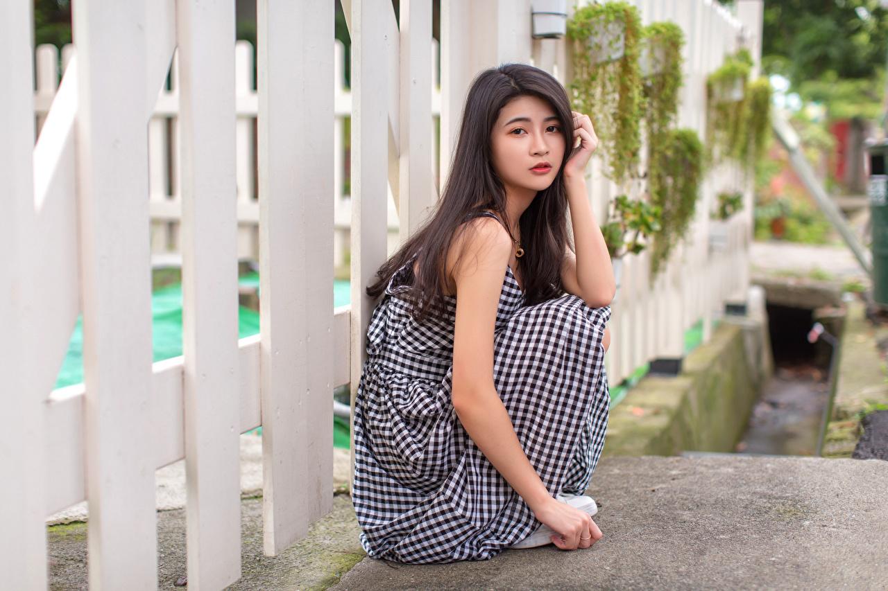 Asiático Sentado Valla Contacto visual mujer joven, mujeres jóvenes, asiática, cerca, sentada Chicas
