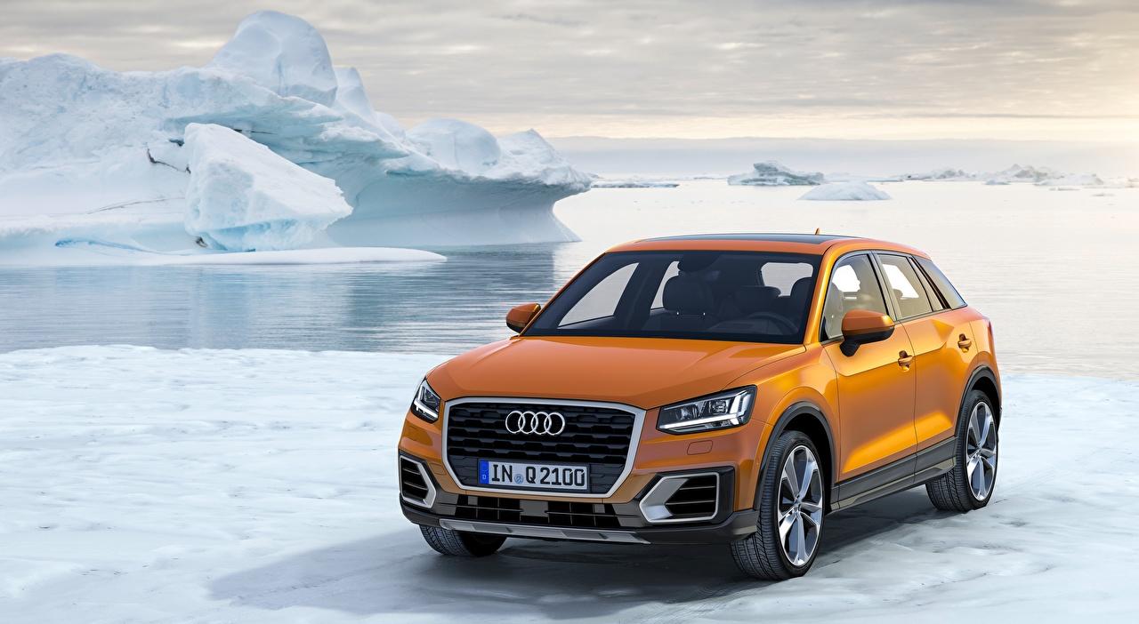 Bilder Audi Crossover Q2, TFSI, quattro, 2016 Orange Schnee Autos Softroader auto automobil