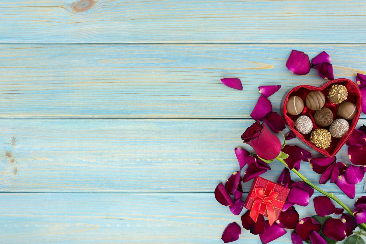 Fotos Valentinstag Rosen Bonbon kronblätter Blumen Lebensmittel Vorlage Grußkarte Bretter Rose Blütenblätter Blüte das Essen