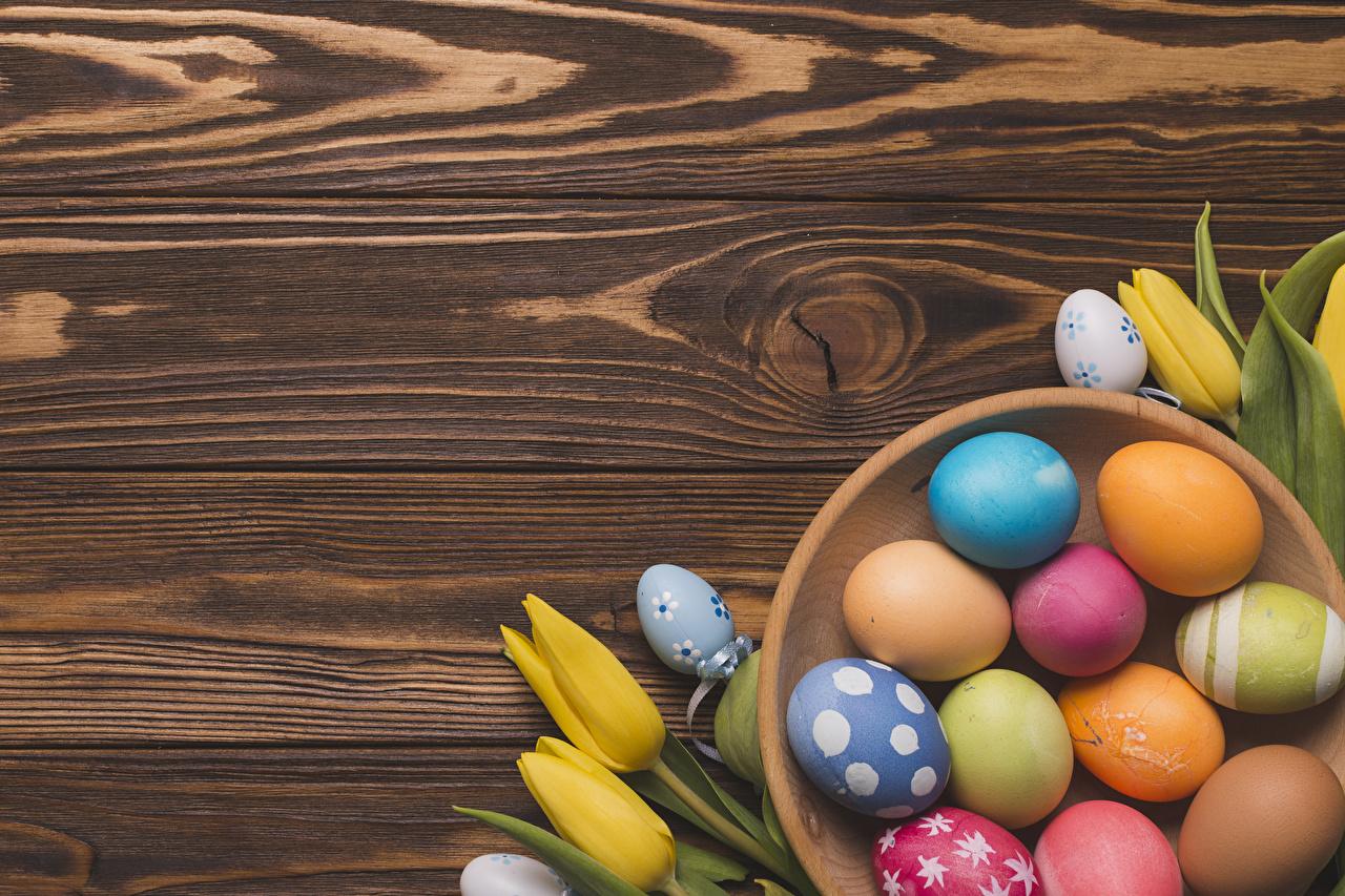 Pascua Tulipas Tablones de madera Huevo Multicolor Diseño comida, flor, tulipa, tulipanes, huevos, Holzplanken Alimentos Flores