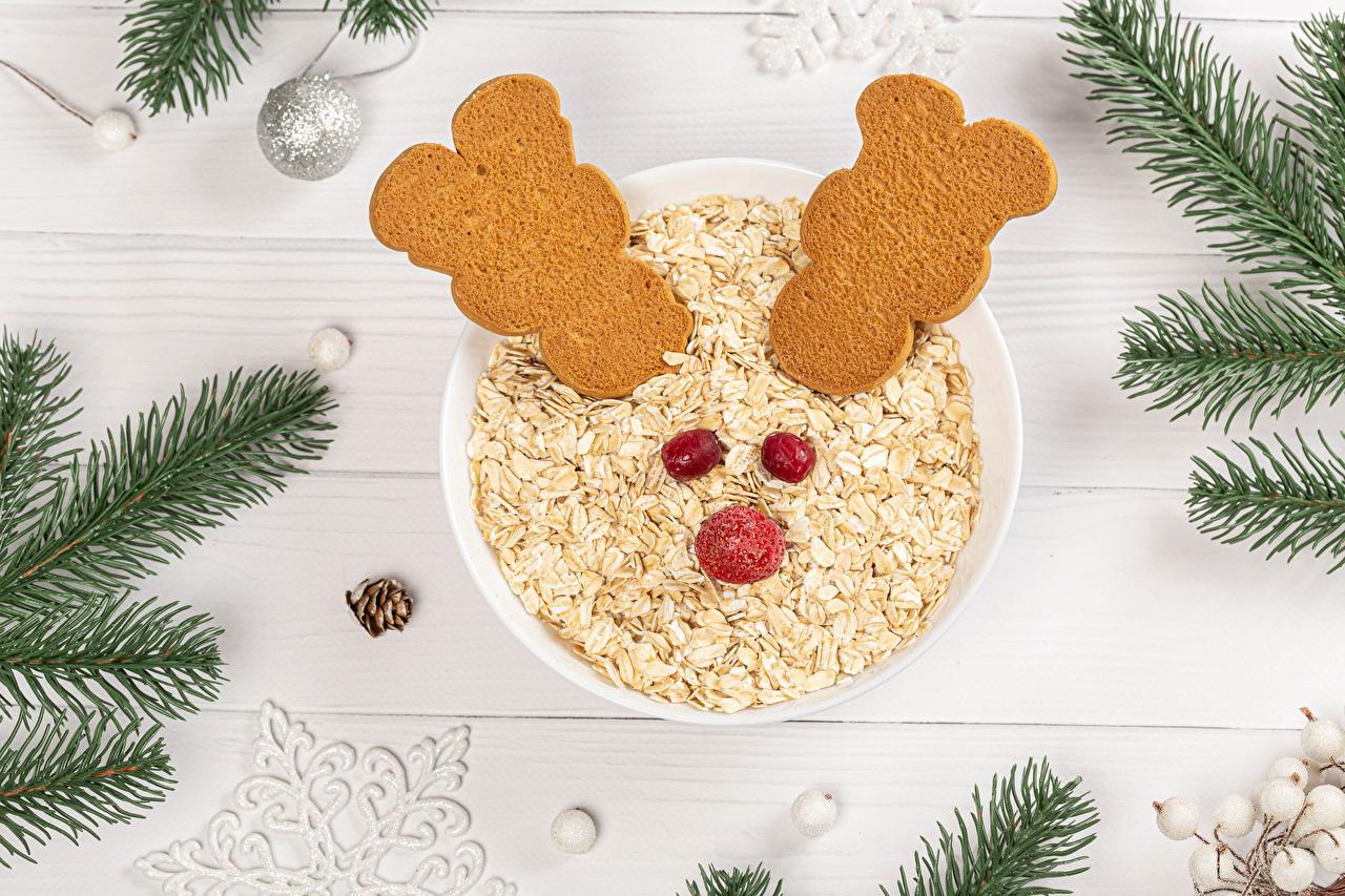Bilder von Neujahr Haferbrei Ast Kekse Kugeln Lebensmittel Bretter das Essen