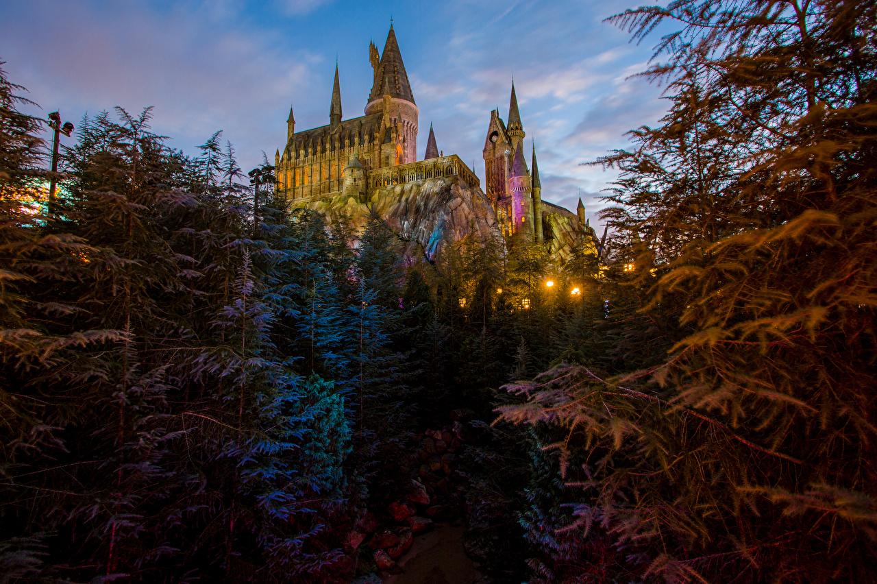 Wallpaper Anaheim California Disneyland USA Castles Parks Evening Street lights Cities Design