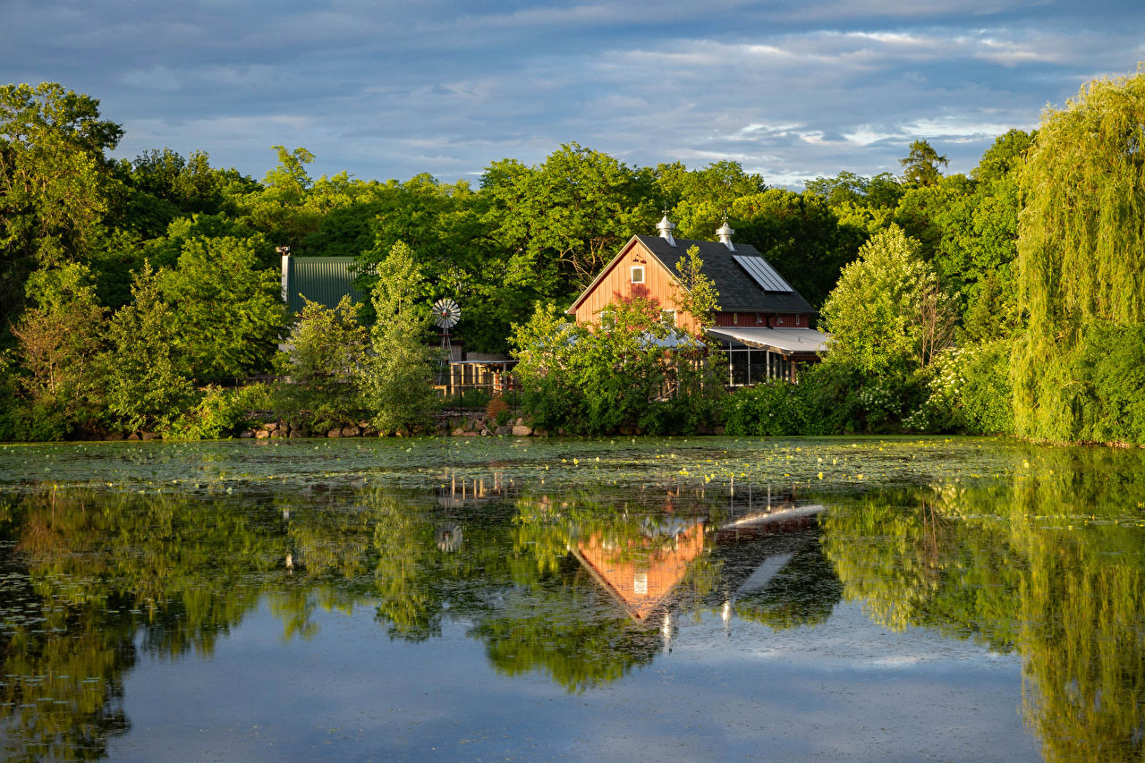 Picture Nature Pond reflected Trees Houses Reflection Building