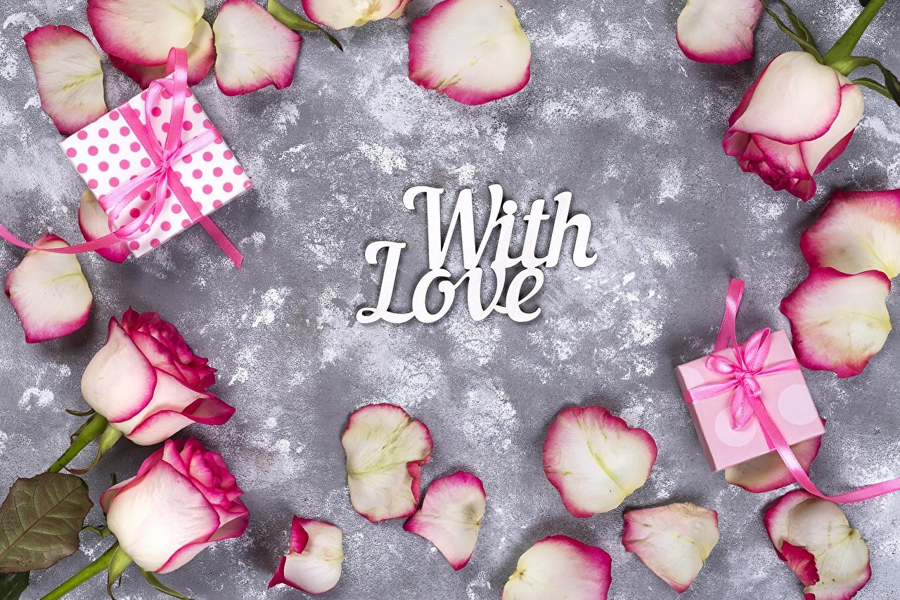 Foto Valentinstag englischer With Love Rose text Blüte Geschenke Englisch englische englisches Rosen Wort Blumen