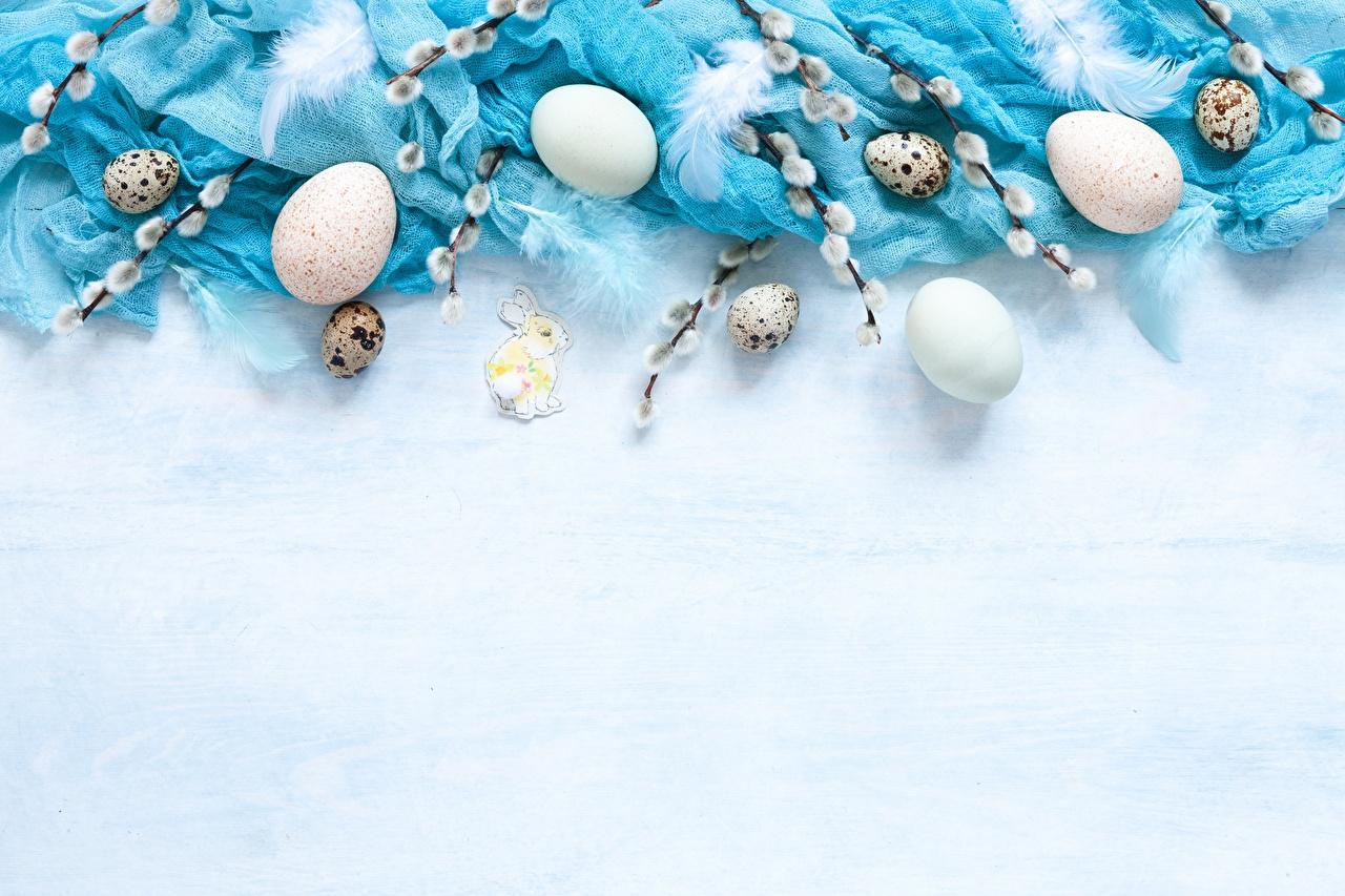 Bilder von Ostern verba eier Vorlage Grußkarte Ei