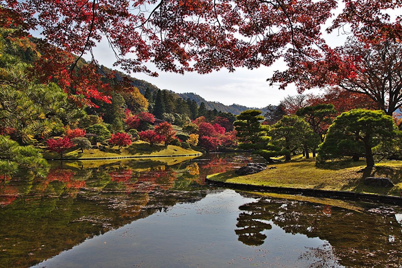 Fonds d'ecran Kyoto Japon Automne Parc Jardins Étang Branche Arbres Nature télécharger photo