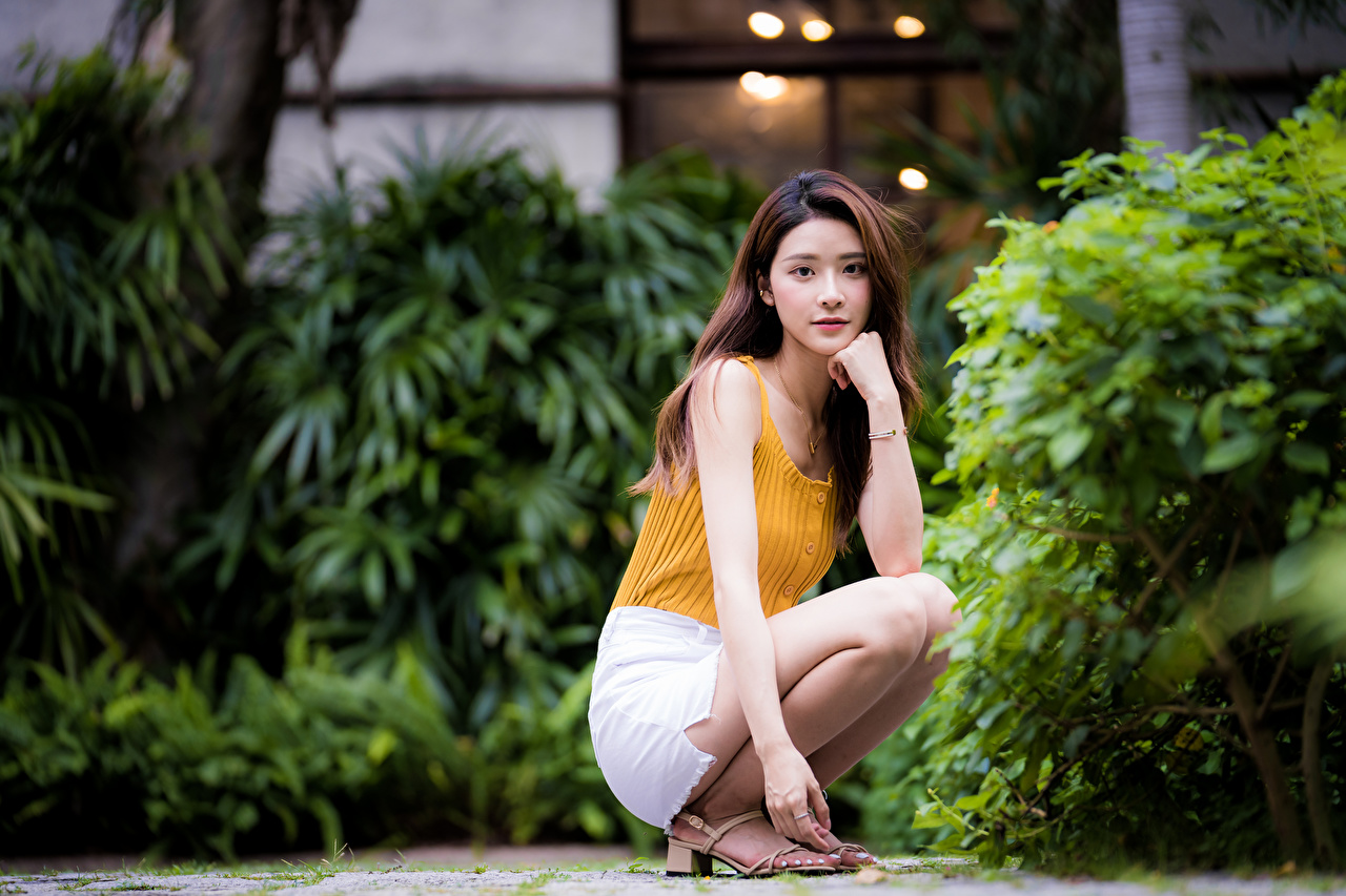 Photos Brown haired blurred background Girls Asian Hands Sitting Glance Bokeh female young woman Asiatic sit Staring