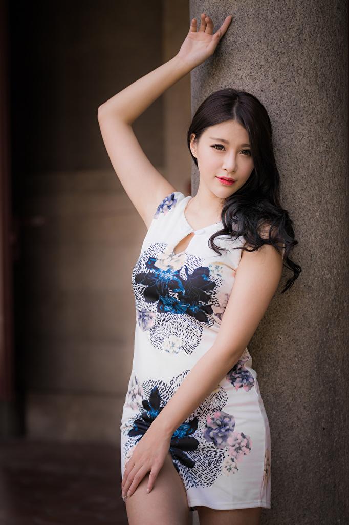 Fotos von Pose junge Frauen Asiaten Starren Kleid  für Handy posiert Mädchens junge frau Asiatische asiatisches Blick