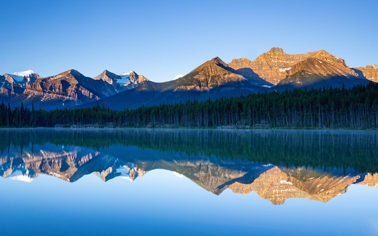 Bilder Banff Kanada Herbert Lake, Alberta Natur Gebirge See Park Wald spiegelt Berg Parks Wälder Reflexion Spiegelung Spiegelbild