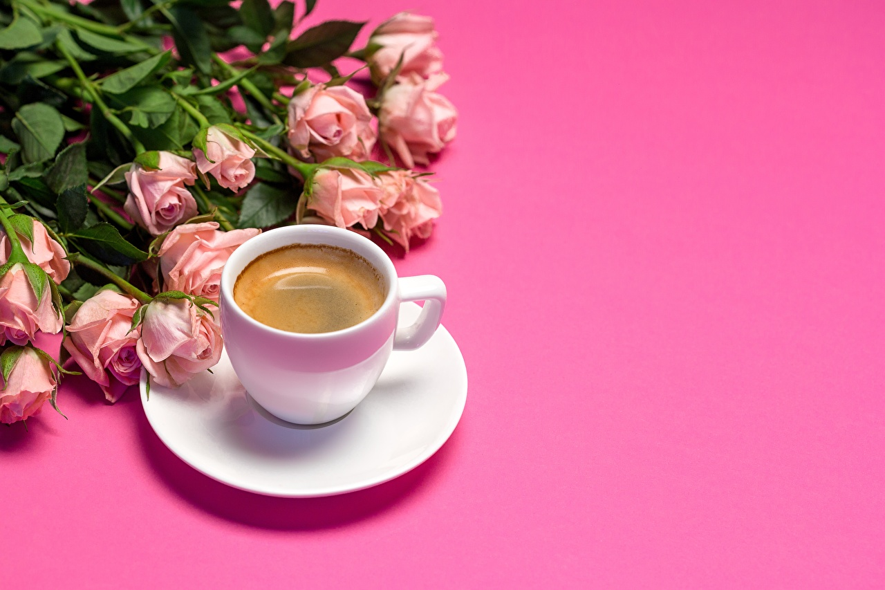 Pictures bouquet Roses Coffee Pink color Flowers Cup Pink background Bouquets rose flower