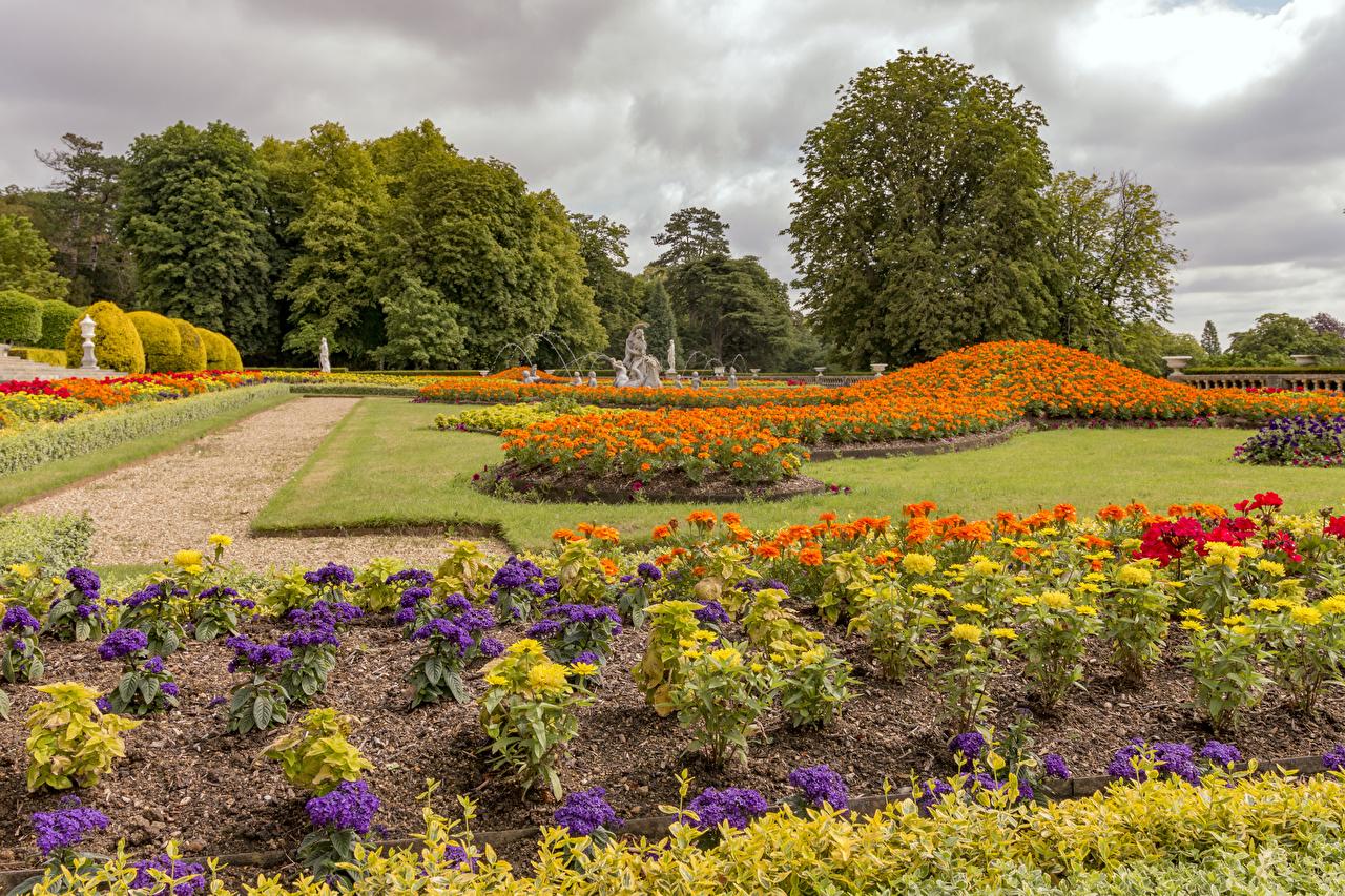 Foto England Waddesdon Manor gardens Natur Parks Georginen Studentenblume Rasen Design Park Tagetes Dahlien Sammetblume