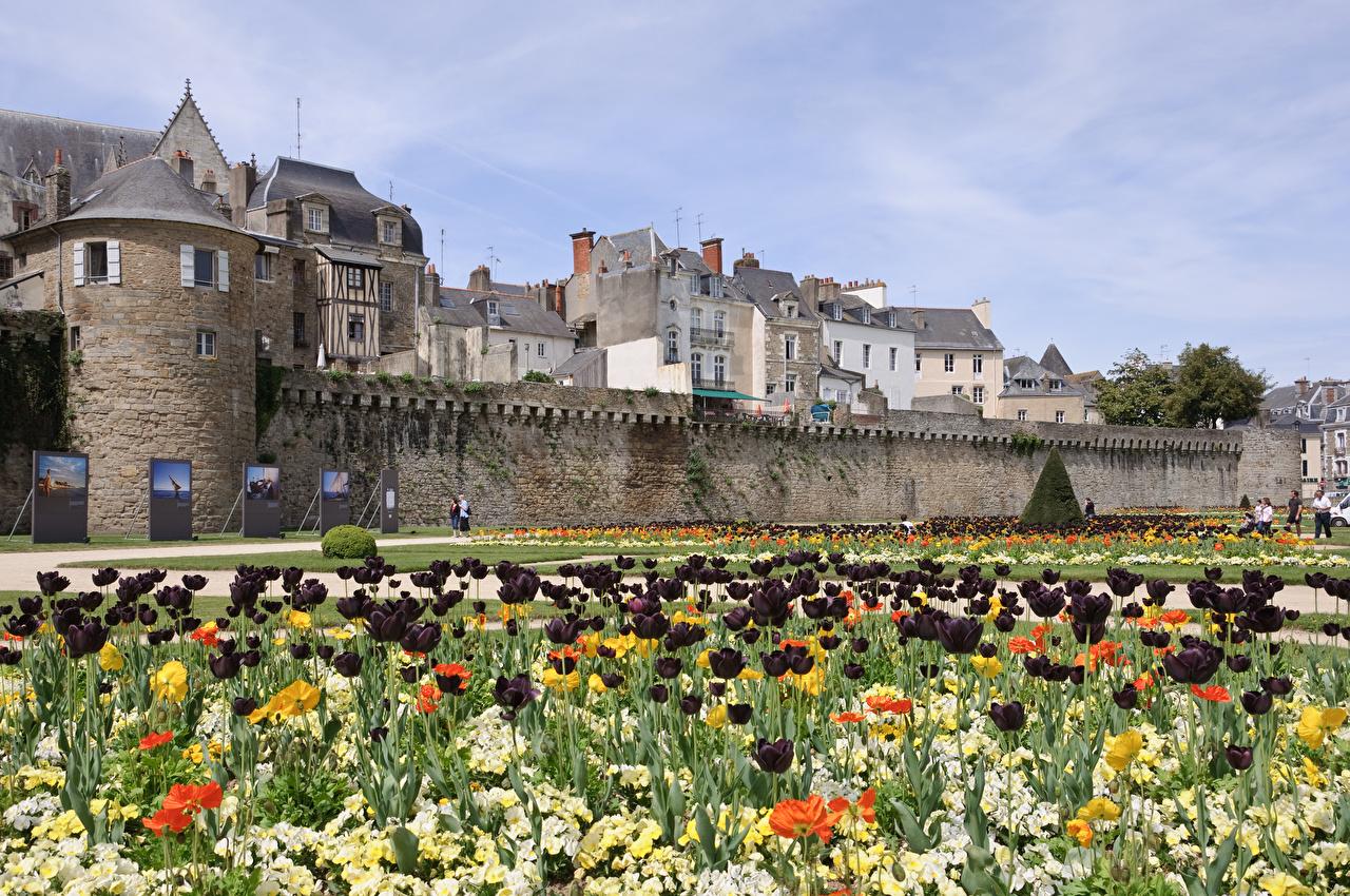 Wallpaper France Van, Brittany Tulips Gardens Cities tulip