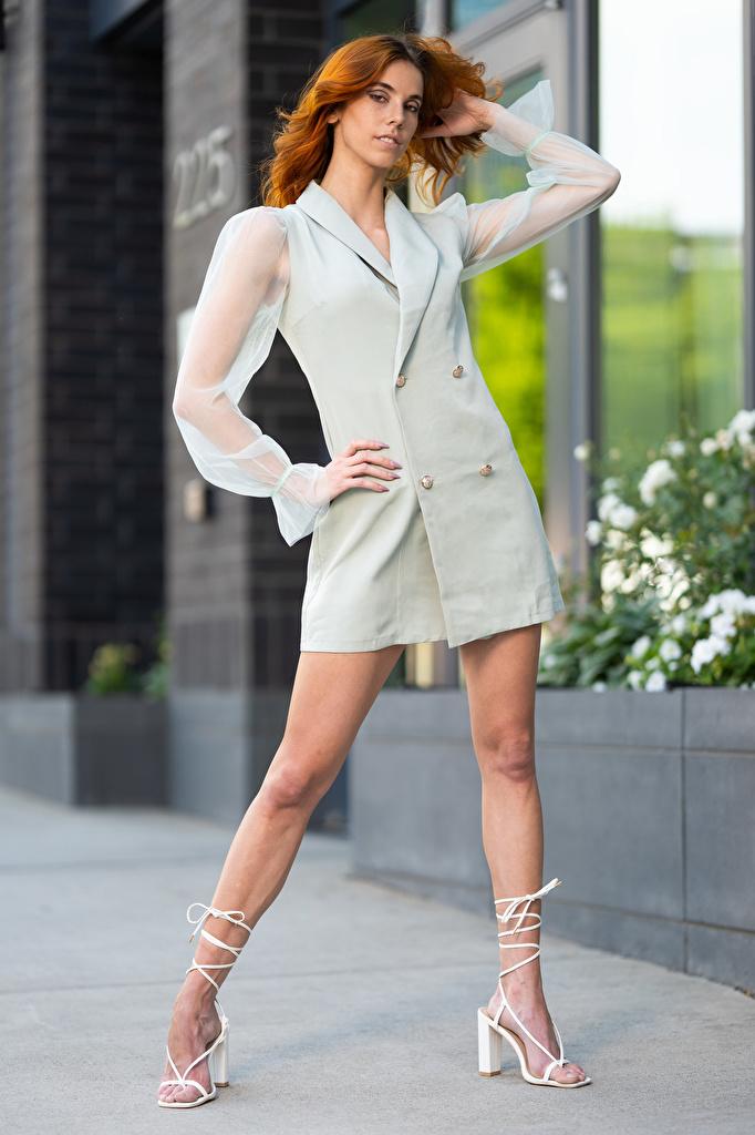 Desktop Hintergrundbilder Taylor Freeze Rotschopf posiert junge Frauen Bein Blick Kleid  für Handy Pose Mädchens junge frau Starren