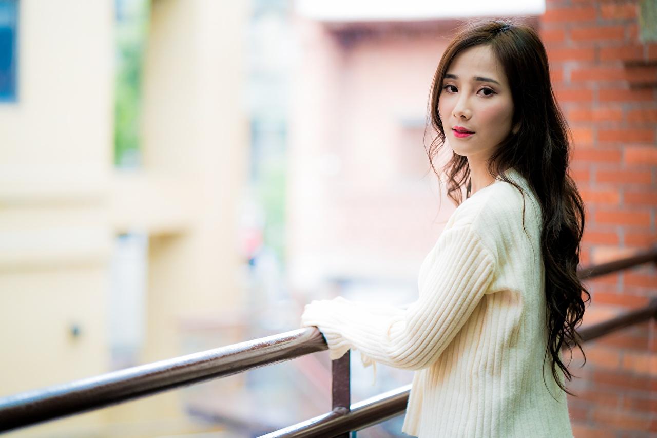 Foto Brunhårig tjej suddig bakgrund ung kvinna Staket Tröja asiatisk Blick Bokeh Unga kvinnor Asiater stängsel ser