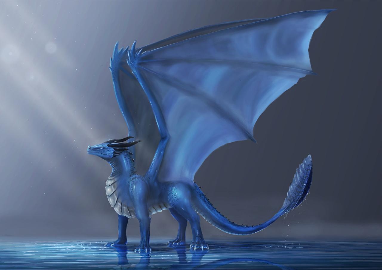 Rorium le dragon aquatique Dragons_Wings_Light_Blue_497936