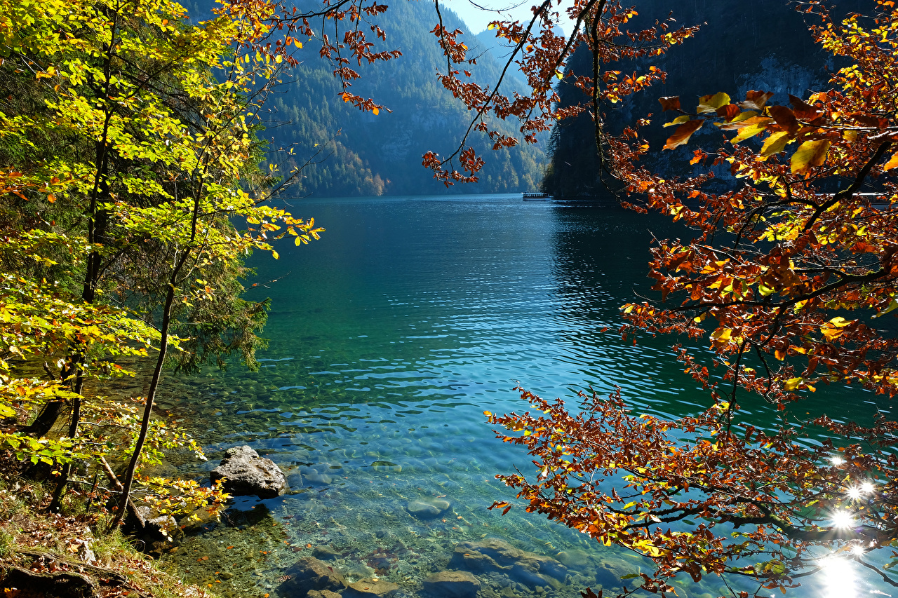 Images Germany Konigsee Nature Autumn Lake Stones Branches
