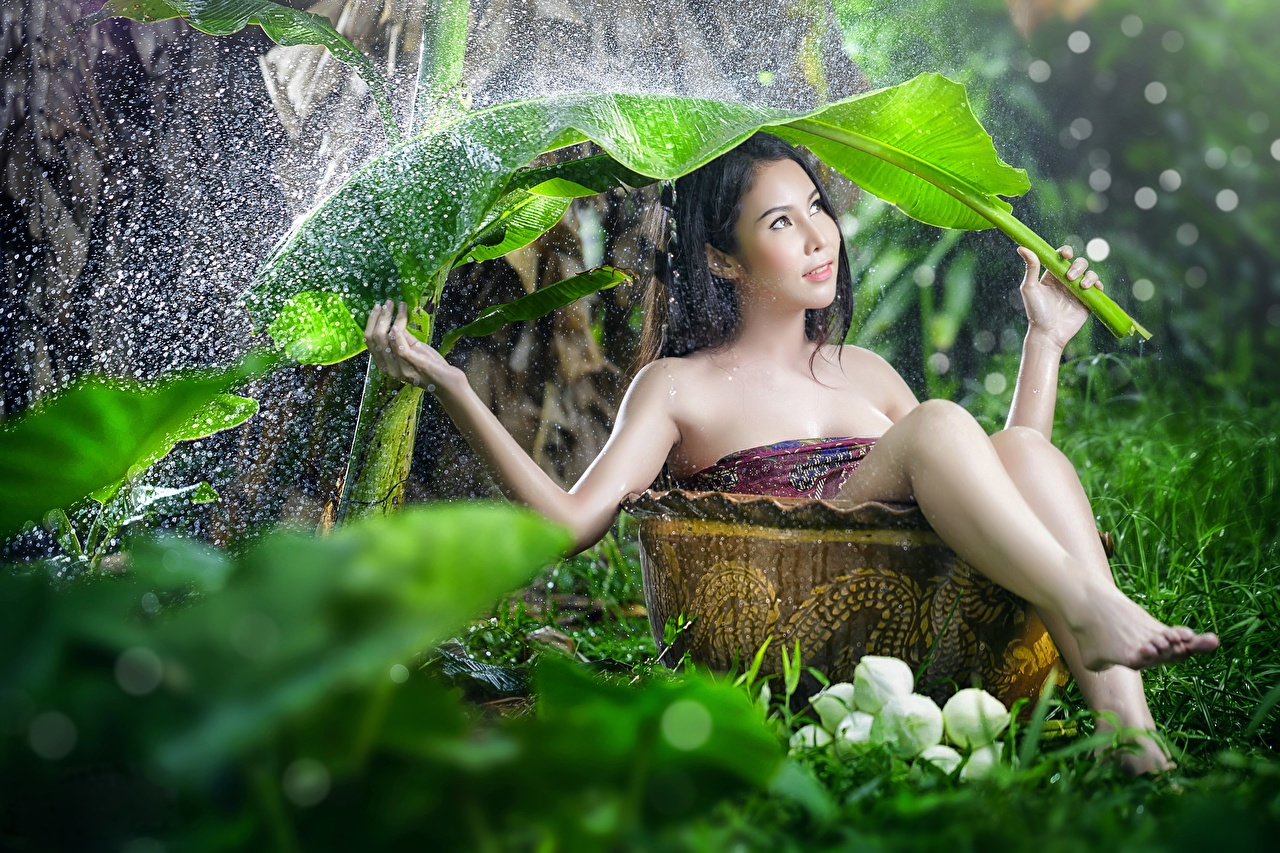 Photo Leaf Brunette girl Bokeh young woman Rain Asiatic Water splash Sitting Foliage blurred background Girls female Asian sit