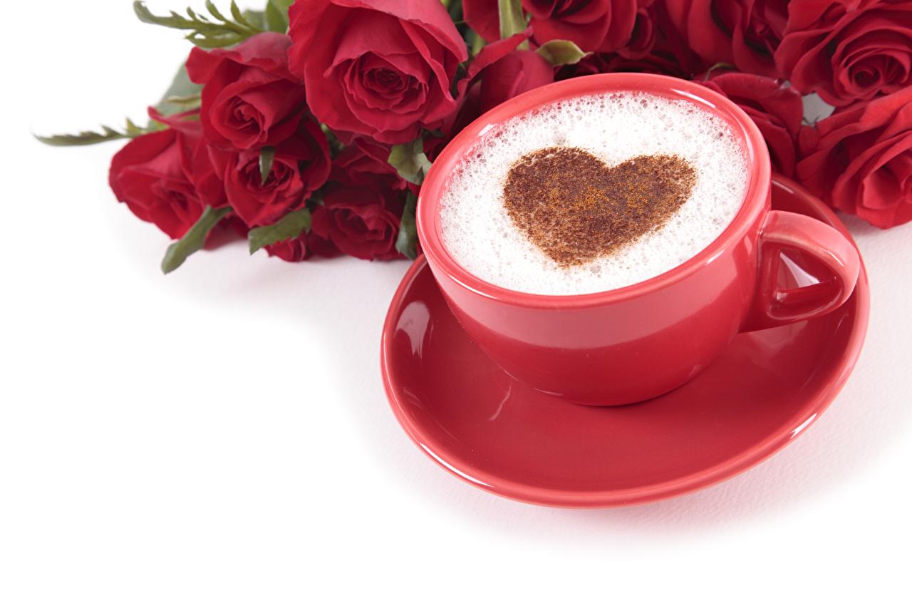 Картинки День святого Валентина сердечко Кофе Розы Красный Капучино цветок Пища Чашка пеной Белый фон День всех влюблённых серце Сердце сердца роза красная красные красных Цветы Еда Пена пене чашке Продукты питания белом фоне белым фоном