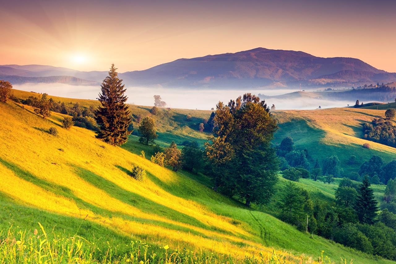 Tapety na pulpit Mgła Natura pejzaż wzgórza Wschody i zachody słońca Trawa Drzewa przyroda Wzgórze Krajobraz świt i zachód słońca