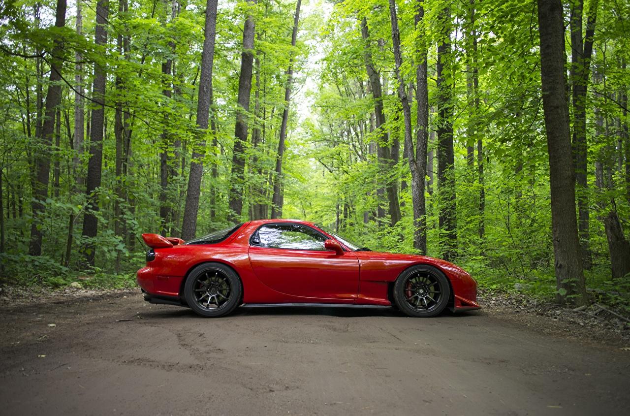 Wallpaper Mazda RX-7 Red Side automobile Cars auto