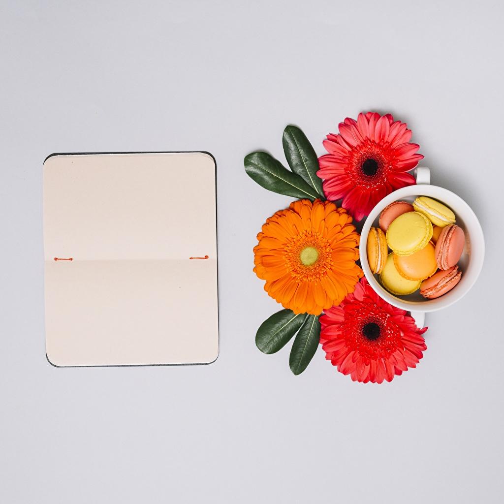 Foto macarons Notizblock Gerbera Blumen Macaron