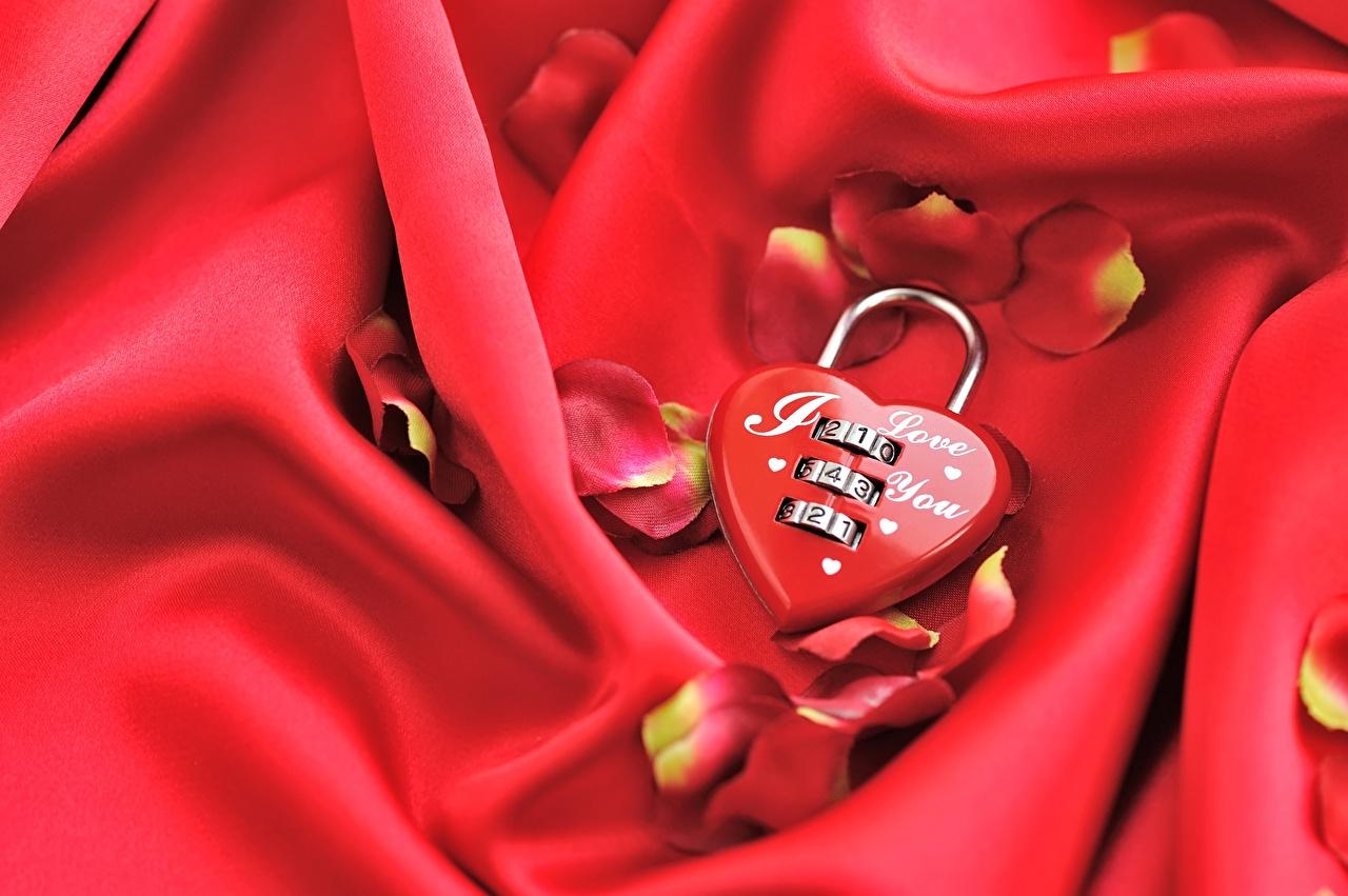 Wallpaper Valentine's Day Heart Padlock Red Petals padlocks