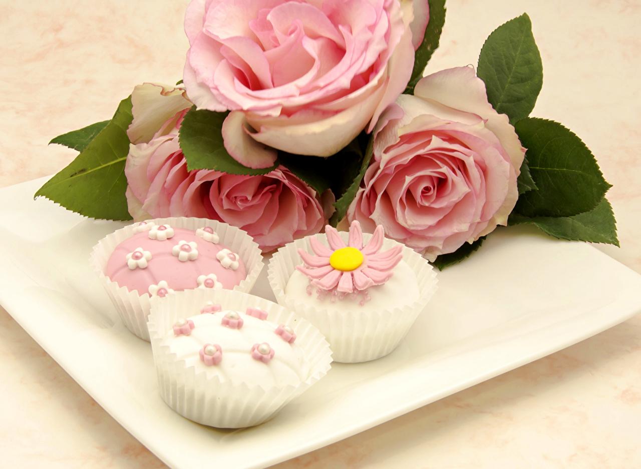 Bilder von Rosen Rosa Farbe Blumen Lebensmittel Törtchen Design