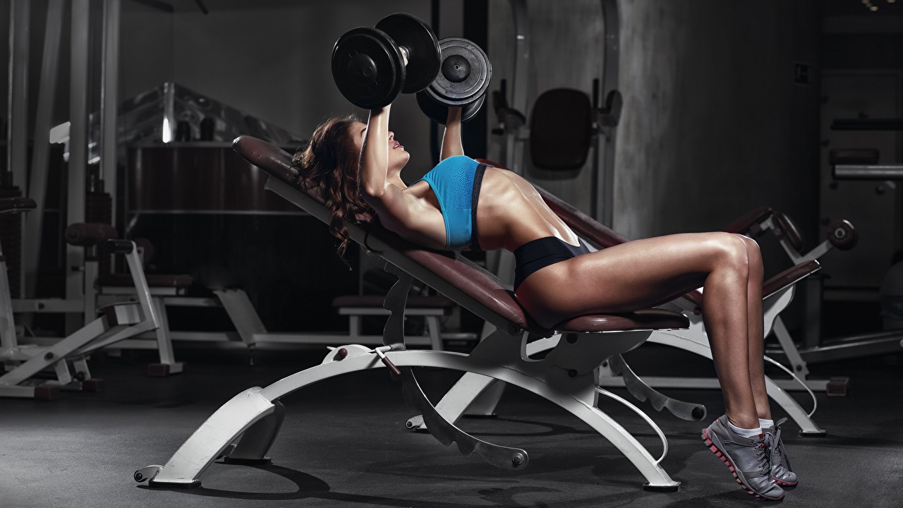 Fotos von Trainieren Fitness Hantel junge frau Bein Körperliche Aktivität Hanteln Mädchens junge Frauen
