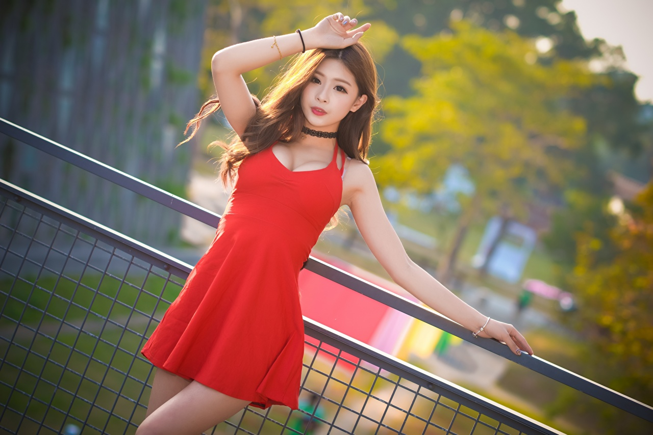 Pictures Brown haired Bokeh female Asian Fence Hands Glance gown blurred background Girls young woman Asiatic Staring frock Dress