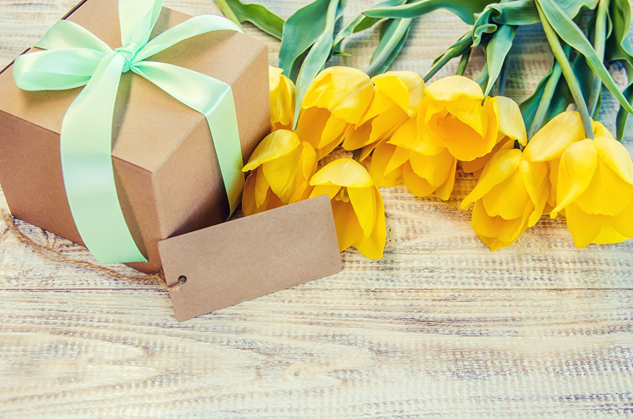 Picture Tulips Box Gifts flower Template greeting card tulip present Flowers