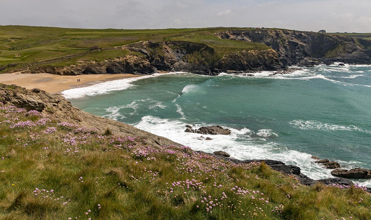 、イギリス、海岸、波、海、Kynance Cove、草、自然、