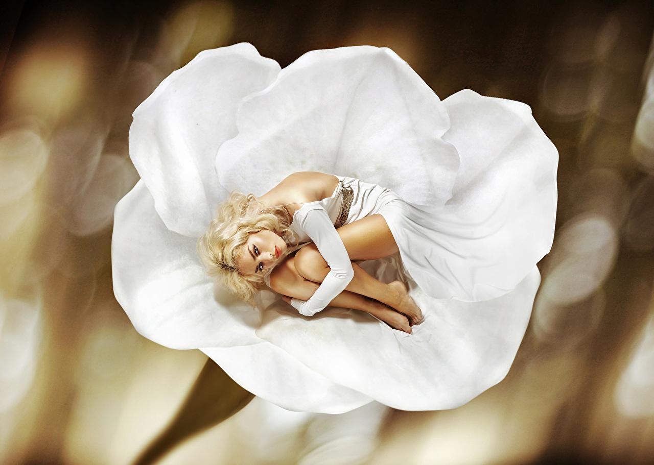 Fotos von Blond Mädchen Mädchens Blick Kleid Blondine Starren