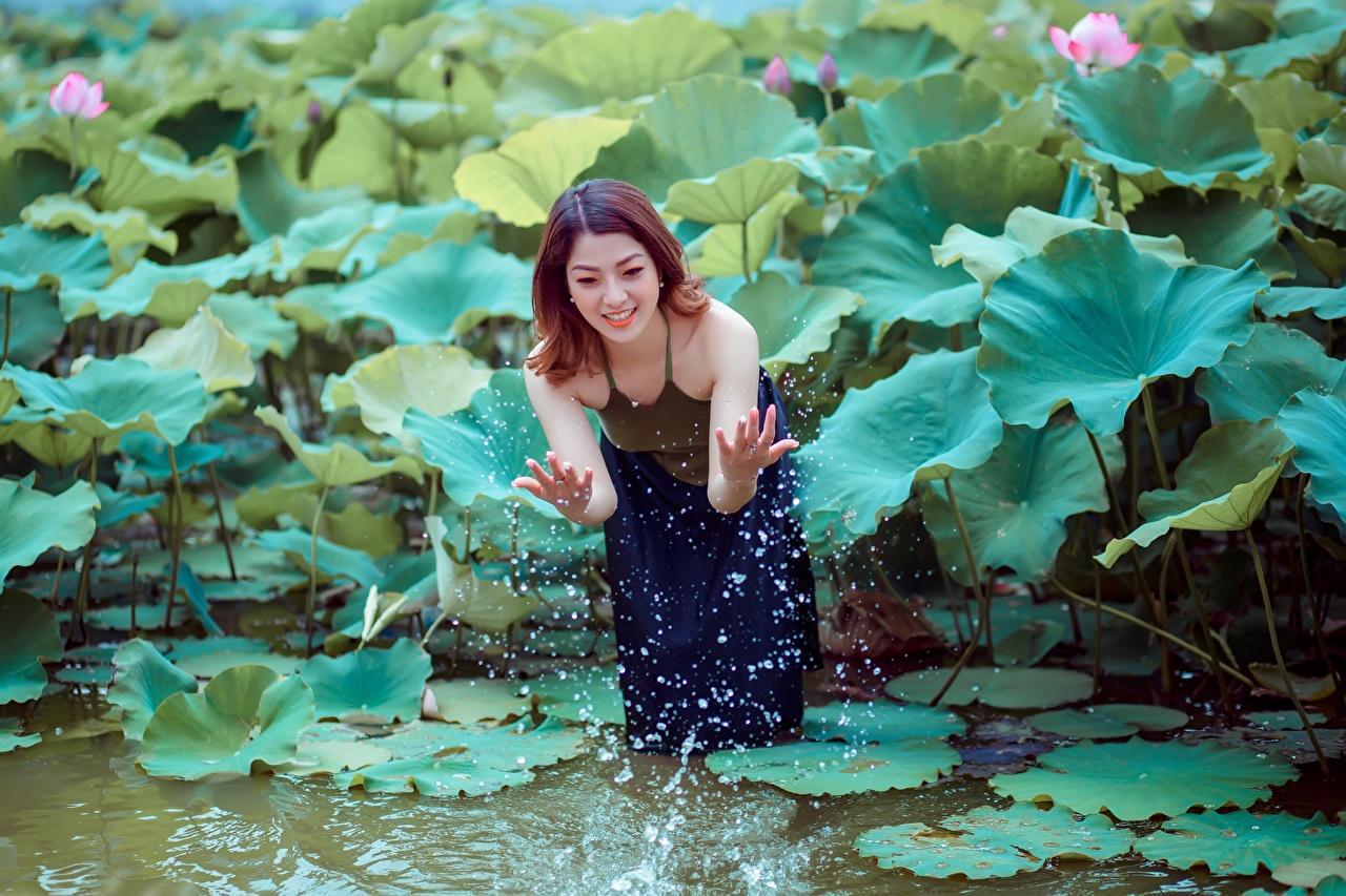 Картинки шатенки Улыбка молодые женщины Пруд Лотос с брызгами Руки Шатенка улыбается девушка Девушки молодая женщина Брызги рука