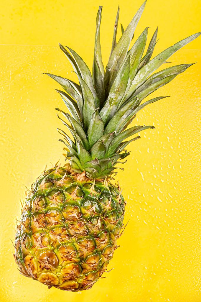 Fotos Ananas Lebensmittel hautnah Farbigen hintergrund  für Handy das Essen Nahaufnahme Großansicht