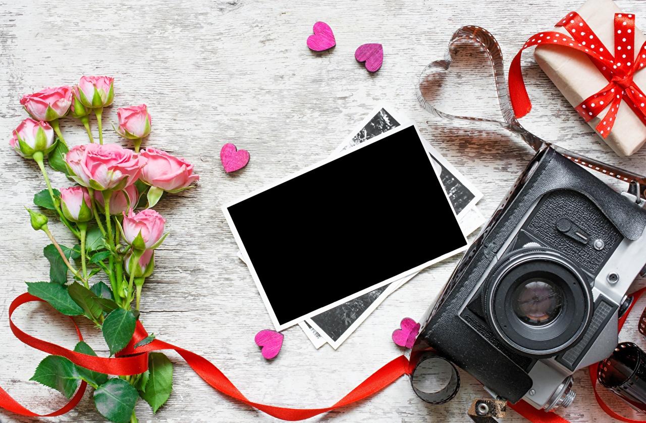 Foto Valentijnsdag Fotocamera Hartje Rozen Bloemen wenskaartsjabloon fototoestel roos bloem Wenskaart Sjabloon