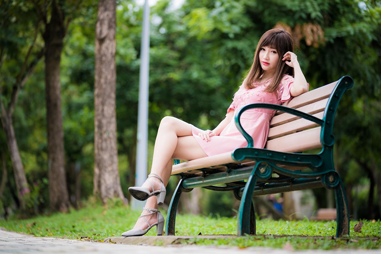 Фотографии Шатенка Размытый фон Девушки ног Азиаты Сидит Скамейка смотрит платья шатенки боке девушка молодая женщина молодые женщины Ноги азиатки азиатка сидя Скамья сидящие Взгляд смотрят Платье