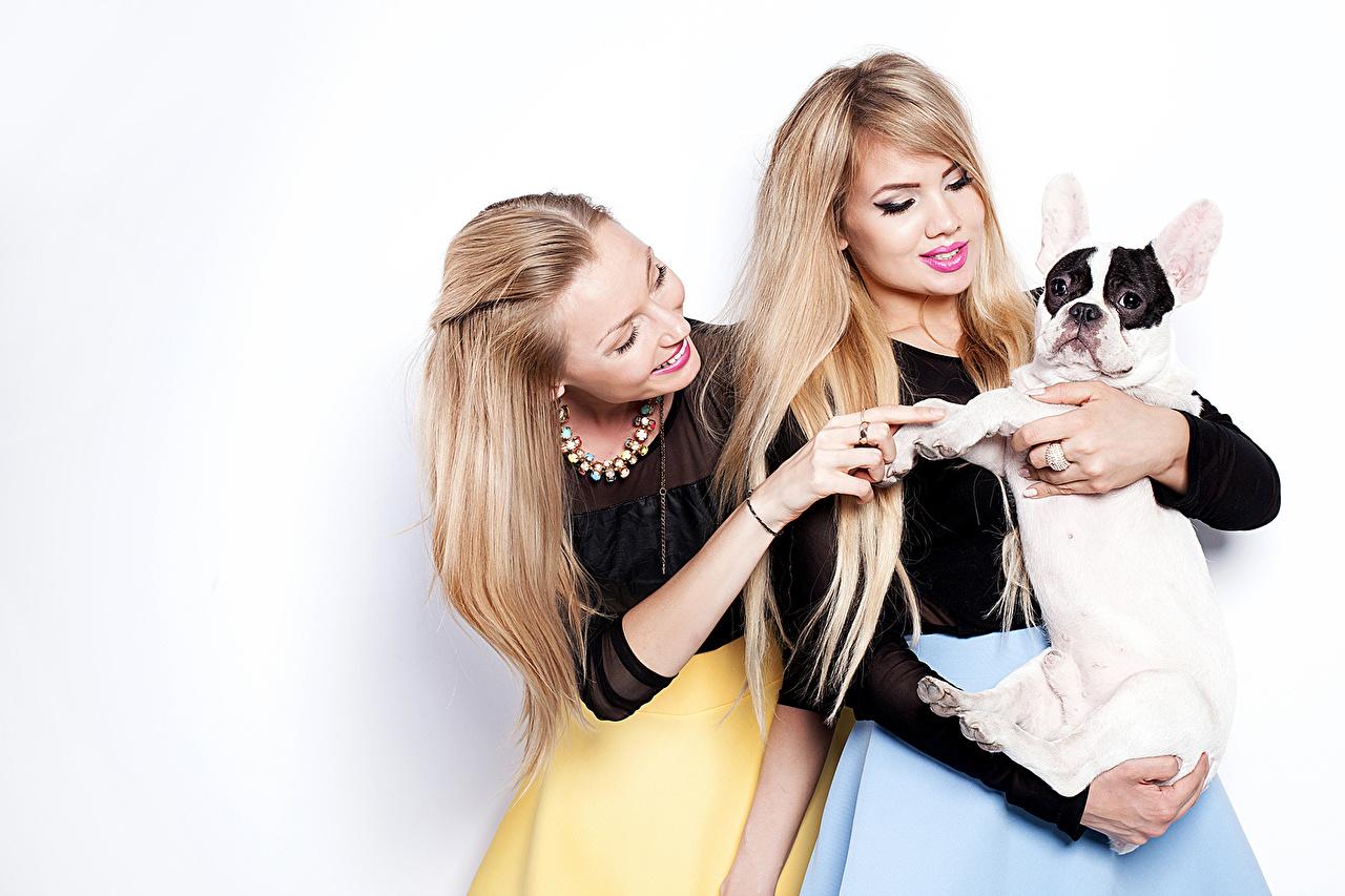 Image Bulldog dog Blonde girl Two young woman animal Dogs 2 Girls female Animals