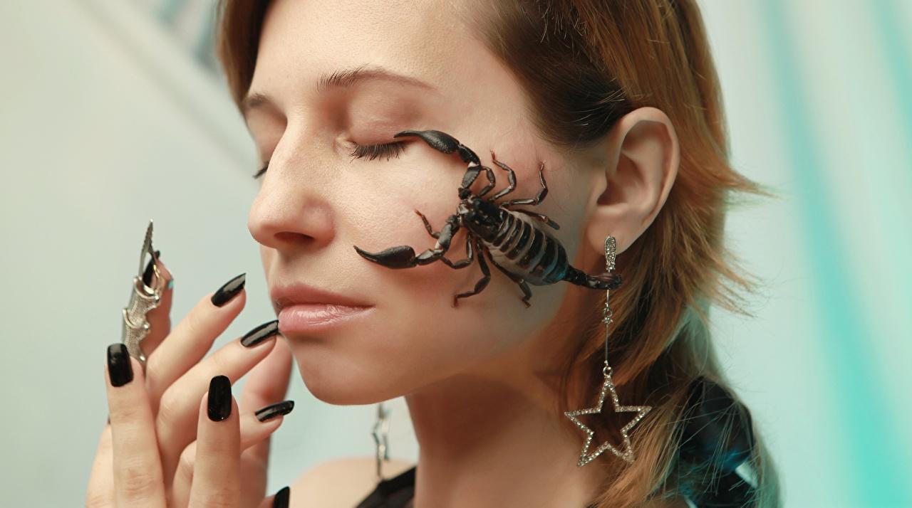 Desktop Hintergrundbilder Skorpione Maniküre Gesicht Mädchens Finger Ohrring junge frau junge Frauen