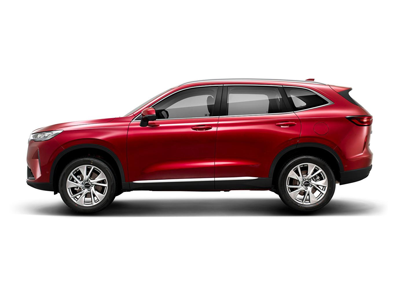 、Haval、H6, 2020、赤、メタリック塗、側面図、クロスオーバー、白背景、中国の、��ヴァル、自動車、