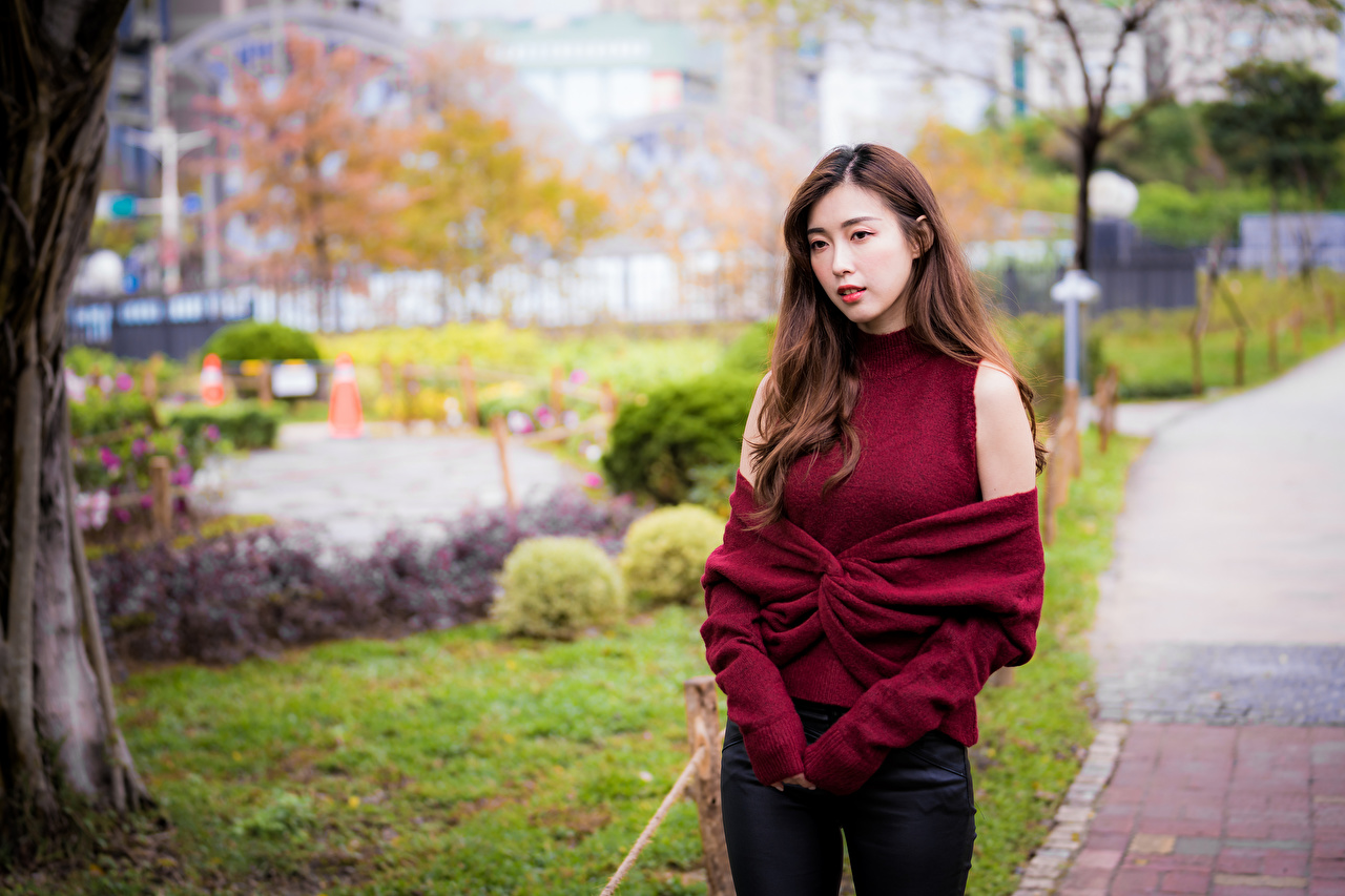 Photo Brown haired Bokeh Girls Asian Sweater Staring blurred background female young woman Asiatic Glance