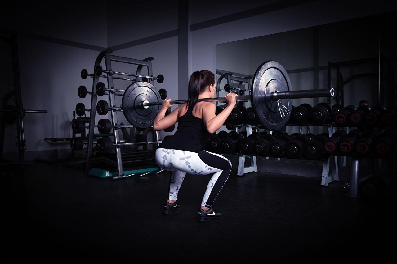 Fotos von Trainieren Fitnessstudio Kniebeugen Fitness sportliches Hantelstange Hinten Turnhalle Körperliche Aktivität hockt Kauert Sport