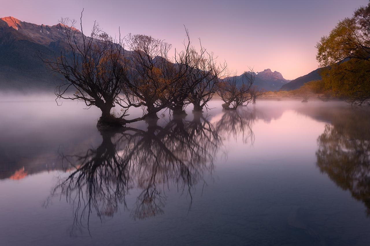 Image New Zealand Glenorchy, Lake Wakatipu Fog Autumn Nature mountain Trees Mountains