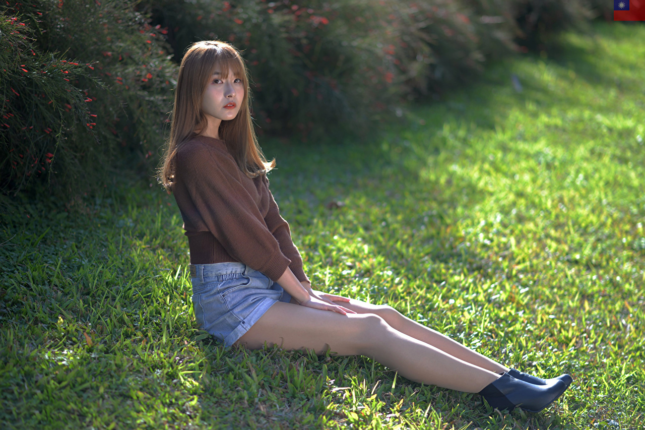 Pictures young woman Legs Asian Sweater Grass Shorts Sitting Glance Girls female Asiatic sit Staring