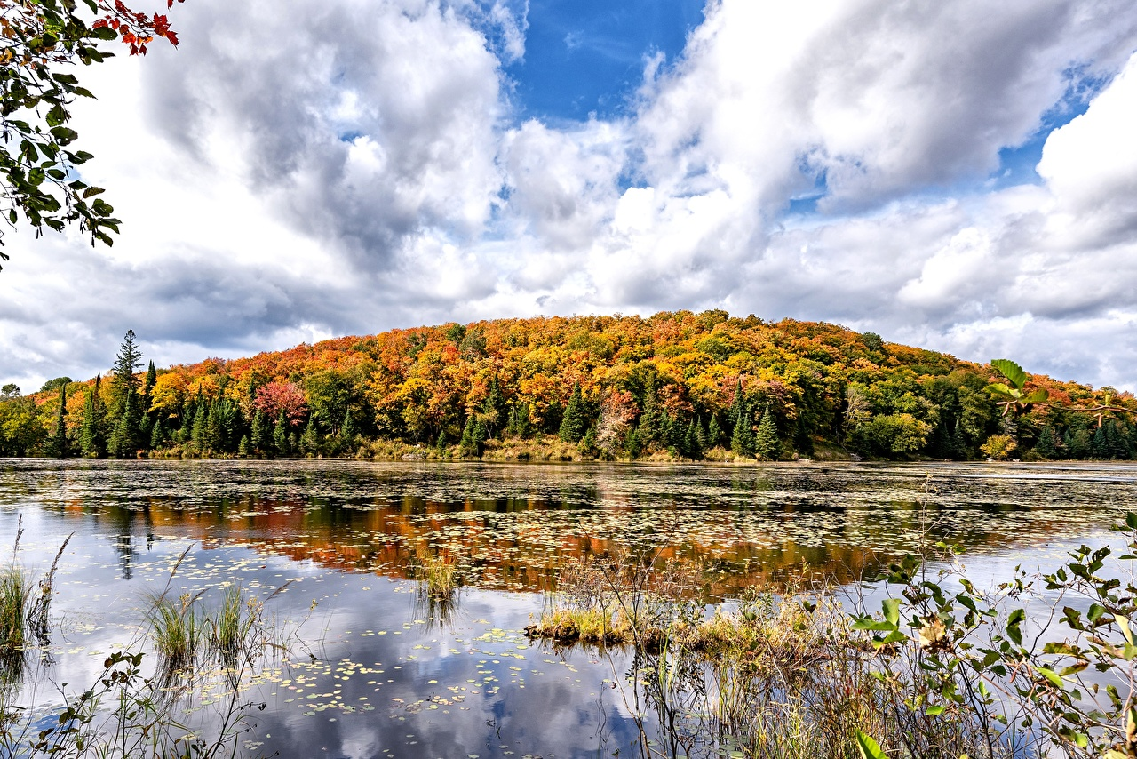 Images Canada Ontario Autumn Nature Lake Forests forest