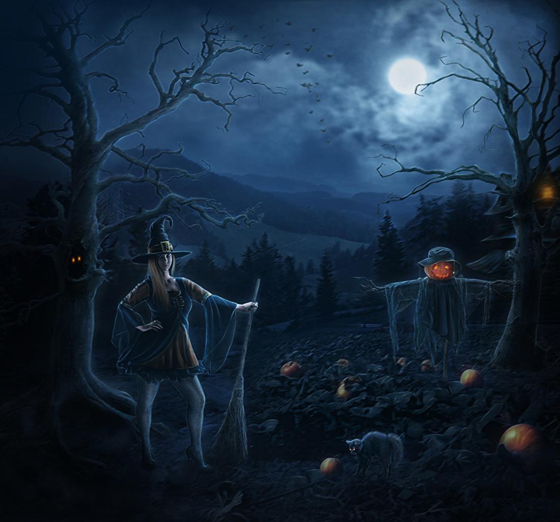 壁紙 ハロウィン ゴシックファンタジー 夜 月 帽子 ファンタジー
