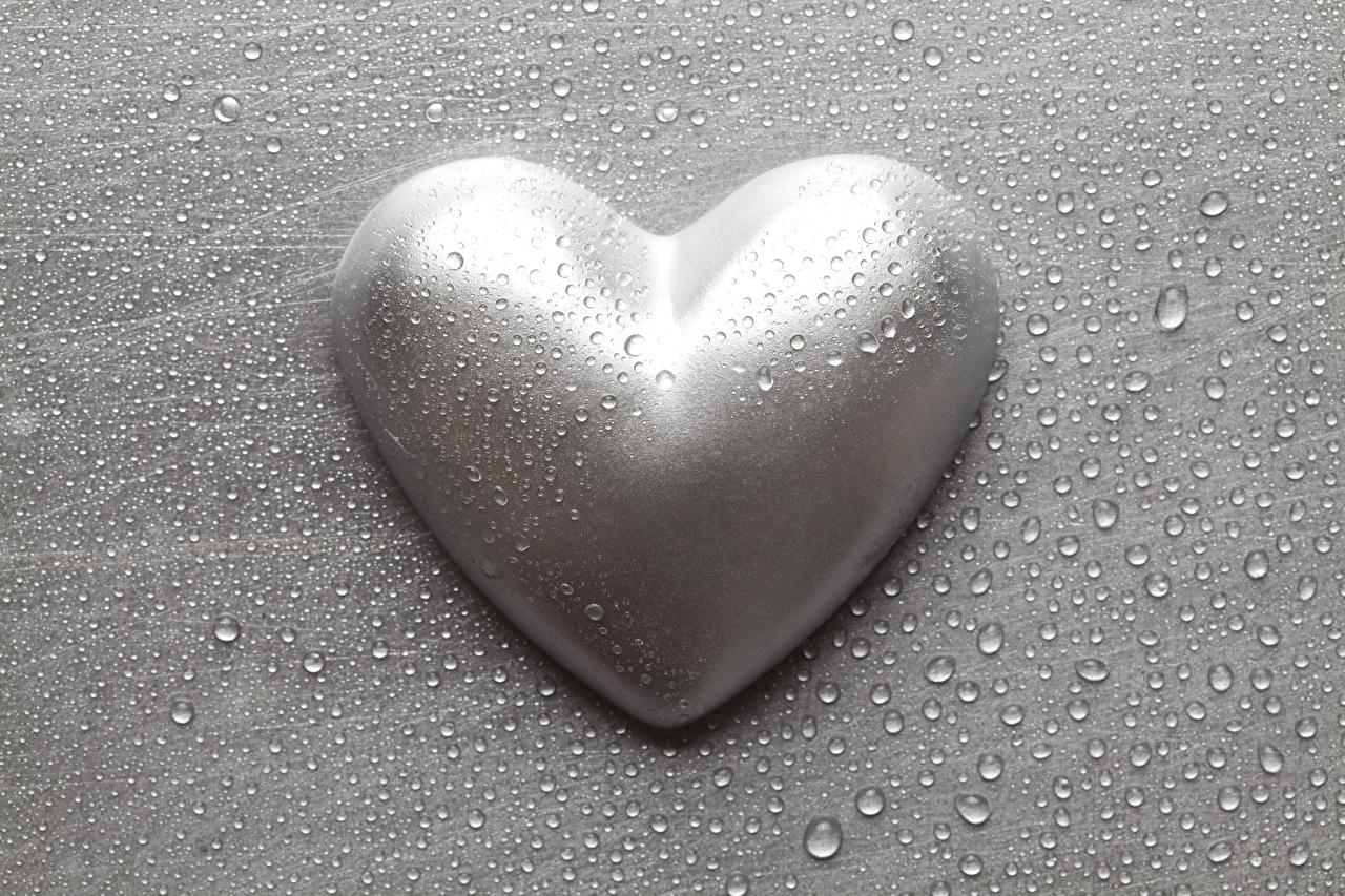 Фотография День святого Валентина сердечко Серый капельки День всех влюблённых серце Сердце сердца серая серые капля Капли капель