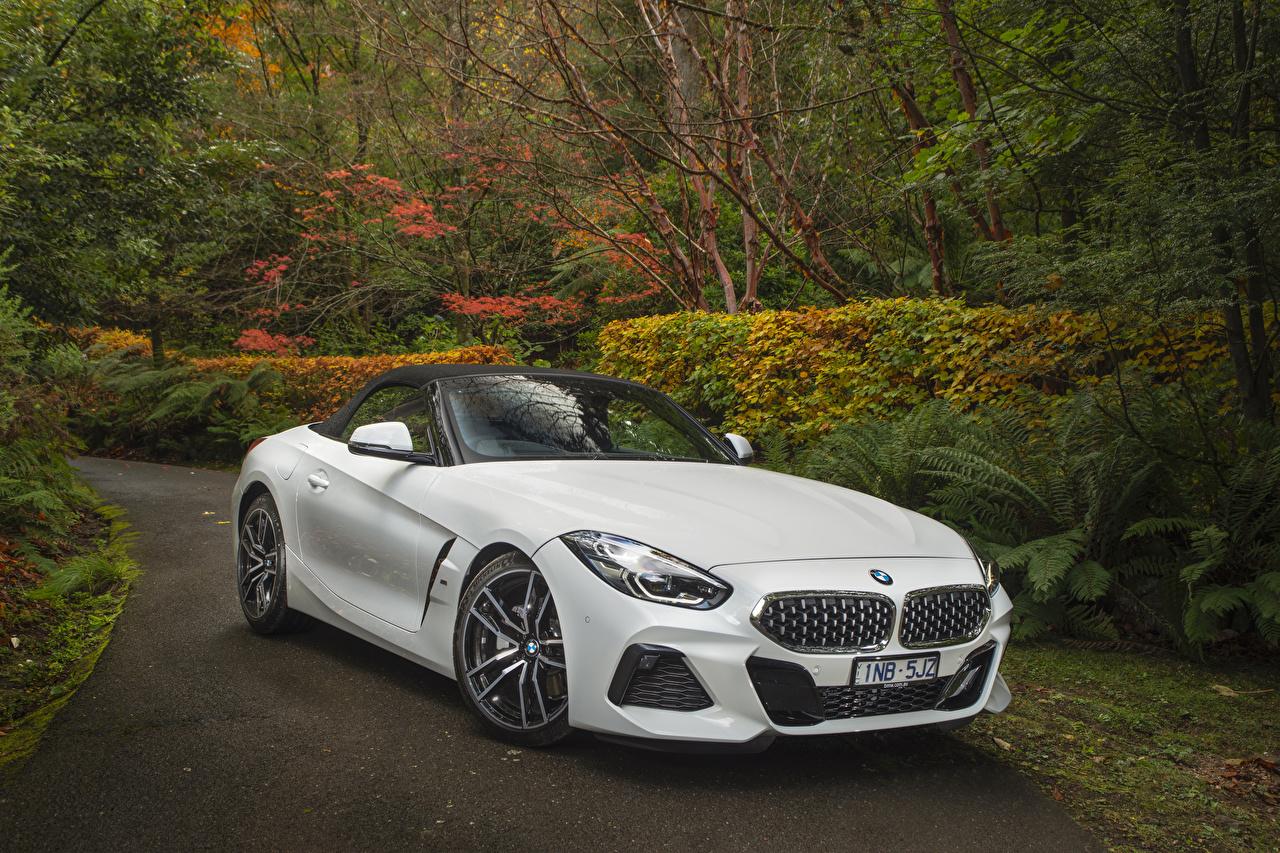 Image BMW BMW Z4 2019 sDrive20i M Sport White automobile Cars auto