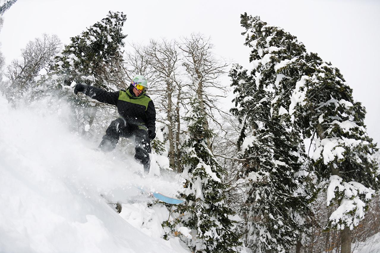 Bilder Mann Sport Winter Fichten Snowboard Schnee